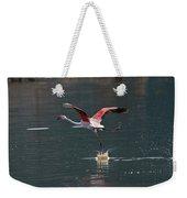 Flamingo Kick Off  Weekender Tote Bag