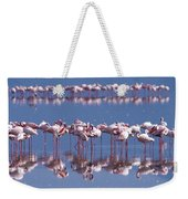 Flamingo Reflection - Lake Nakuru Weekender Tote Bag