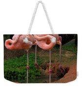 Flamingo See Flamingo Do Weekender Tote Bag