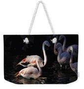 Flamingo Study - 2 Weekender Tote Bag