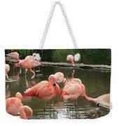 Flamingoes Looking Oh So Pretty  Weekender Tote Bag