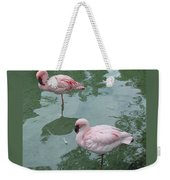 Flamingoes Posing Weekender Tote Bag