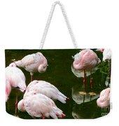 Flamingos 10 Weekender Tote Bag
