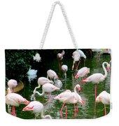Flamingos 6 Weekender Tote Bag