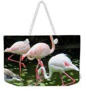 Flamingos 8 Weekender Tote Bag