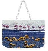 Flamingos At Torres Del Paine Weekender Tote Bag