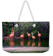 Flamingos II Weekender Tote Bag