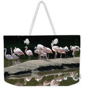 Flamingos With Reflection Weekender Tote Bag