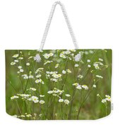 Fleabane In The Meadow Weekender Tote Bag