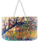Fletcher Lake  14 Weekender Tote Bag