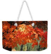 Flickering Sunlight Weekender Tote Bag
