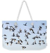 Flight Of The White Ibis Weekender Tote Bag