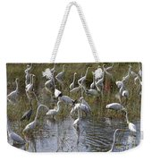 Flock Of Different Types Of Wading Birds Weekender Tote Bag