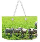 Flock Of Sheep Standing In A Field Waiting Weekender Tote Bag
