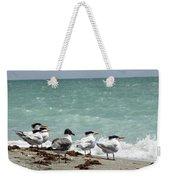 Flock Of Terns Gp Weekender Tote Bag