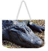 Florida Alligator Weekender Tote Bag