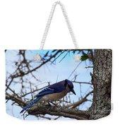 Florida Blue Jay Weekender Tote Bag