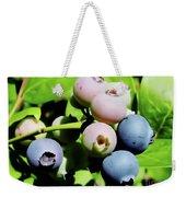 Florida - Blueberries - On The Bush Weekender Tote Bag