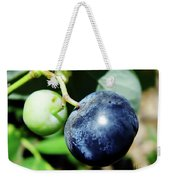 Florida - Blueberry Weekender Tote Bag