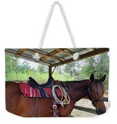 Florida Cracker Horse Weekender Tote Bag