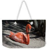 Florida Flamingo Weekender Tote Bag