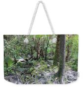 Florida Landscape - Lithia Springs Weekender Tote Bag
