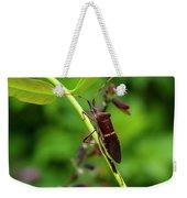 Florida Leaf-footed Bug Weekender Tote Bag