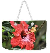 Florida Red Weekender Tote Bag