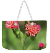 Florida Tasselflower Weekender Tote Bag