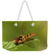 Flower Fly Allograpta Obliqua Weekender Tote Bag