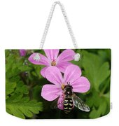 Flower Fly On Stinky Bob Weekender Tote Bag