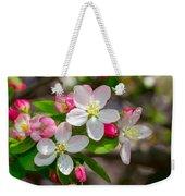 Flowering Cherry Tree Blossoms Weekender Tote Bag