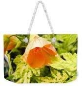 Flowering Maple Weekender Tote Bag