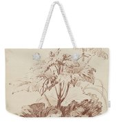 Flowering Plant With Buds Weekender Tote Bag