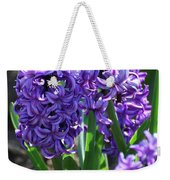Flowering Purple Hyacinthus Flower Bulb Blooming Weekender Tote Bag