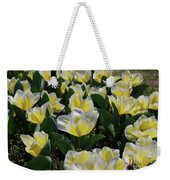 Flowering Yellow And White Tulips In A Spring Garden  Weekender Tote Bag