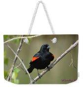 Fluffed Red-winged Blackbird Weekender Tote Bag