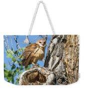 Fluffed Up Barn Owl Owlet Weekender Tote Bag