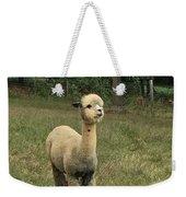 Fluffy Alpaca Weekender Tote Bag