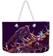 Fly Insect Nature Macro Close  Weekender Tote Bag