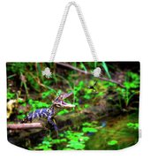 Fly Into My Mouth Please Weekender Tote Bag