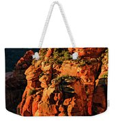 Flying Buttress 06-034 Weekender Tote Bag