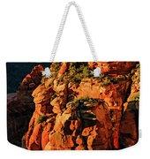 Flying Buttress 06-034 Weekender Tote Bag