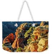 Flying Buttress 06-045 Weekender Tote Bag