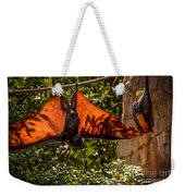 Flying Foxes Weekender Tote Bag