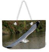 Flying Sea Gull - Eugene Oregon Weekender Tote Bag