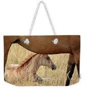 Foal And Mare In A Saskatchewan Pasture Weekender Tote Bag