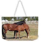 Foal Feeding With Milk Ranch Scene Weekender Tote Bag