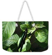 Folded Up - Green And Black Butterfly Weekender Tote Bag