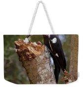 Foraging Pileated Woodpecker Weekender Tote Bag